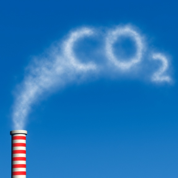 Aim to cut Carbon